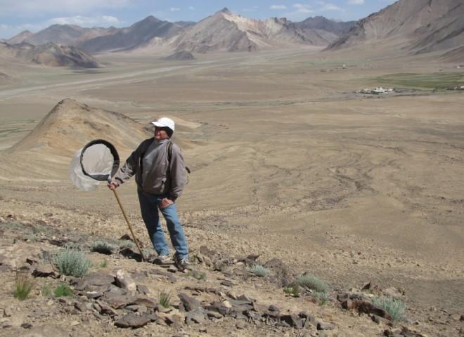 Памир, высота 4000 м над ур. м.